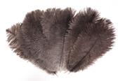 OSTRICH Feathers, SHORT, NATURAL BLACK, per DOZEN