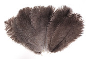 Natural Black Ostrich Feathers 8-12 inch size per Dozen