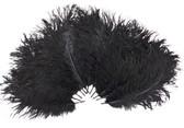Black Ostrich Feathers 8-12 inch size per Dozen