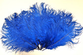 Blue Ostrich Feathers 8-12 inch size per Dozen