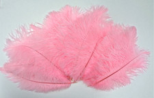 Ostrich Feathers, Candy pink 8-12 Inch size, per Dozen