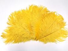 Ostrich Feathers, Yellow,  8-12 Inch size, per Dozen