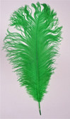 GREEN OSTRICH FEATHER, LONG per each