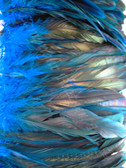 COQUE FEATHERS half bronze 7-10 inch,  TURQUOISE, per YARD