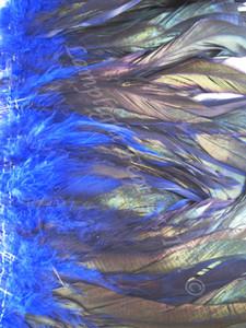 COQUE Feathers half bronze 7-10 inch, BLUE,  per YARD
