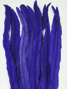 COQUE FEATHERS, 13-16 inches, PURPLE, per DOZEN