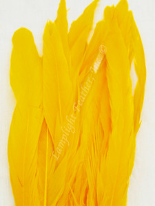 Coque, 15-18 inch, GOLD, per DOZEN