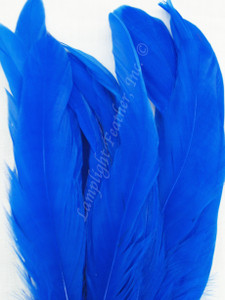 COQUE, 5-8 inch, Royal Blue, per 25