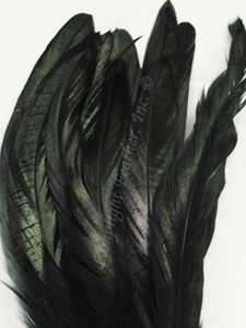 COQUE, 7-10 inch, Black
