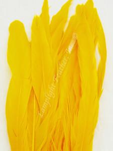 COQUE, 9-12 inch, GOLD, per 12