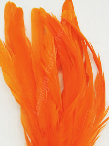 COQUE, 9-12 inch, Orange, per 12