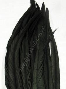 Coque, 15-18 inch, Black, per DOZEN