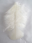 Turkey Plumage Craft Feathers, Ivory, per 1 oz bag