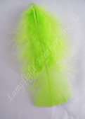Turkey Plumage Craft Feathers, Lime, per 1 oz bag