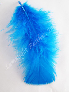 Turquoise Craft Feathers Turkey Plumage per ounce package