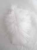 Turkey Plumage Craft Feathers, White, per 1 oz bag
