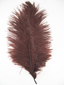 Brown Ostrich feather, long ostrich feather