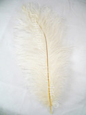 IVORY OSTRICH FEATHER, LONG, per each