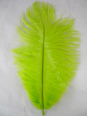 Lime Ostrich feather, long ostrich feather