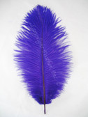 Purple Ostrich feather, long ostrich feather