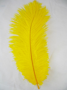 Yellow Ostrich feather, long ostrich feather