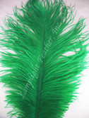 GREEN OSTRICH FEATHERS, STANDARD, 12-16 inch, per EACH