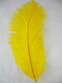 YELLOW OSTRICH FEATHERS, STANDARD, 12-16 inch, per EACH