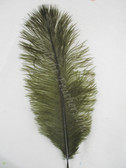 OSTRICH FEATHERS, MINI, dyed over NATURAL, MOSS, per 10