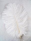 OSTRICH FEATHERS, MINI, White, per 4
