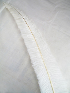 OSTRICH NANDU, LONG, White 16-19 inch per each