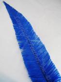 OSTRICH NANDU, SHORT, BLUE 8-12 inch per each