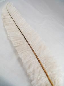 OSTRICH NANDU, SHORT, IVORY 8-12 inch per each