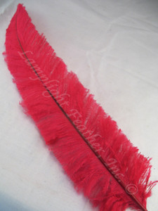 OSTRICH NANDU, SHORT, RED, 8-12 inch per each