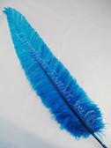 OSTRICH NANDU, SHORT, Turquoise 8-12 inch per each