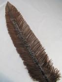 OSTRICH NANDU, STANDARD, Brown 12-16 inch per each