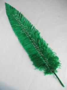 OSTRICH NANDU, STANDARD, GREEN 12-16 inch per each