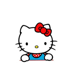 Personalised Luggage Tag - Kitty