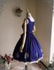 Inside Dress Side View (Dark Blue Ver.)