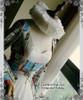 Elizabethan Era, Gothic Stiff Gauze Embroidery Ruffle Collar/Ruffs Choker*2colors Instant Shipping