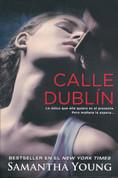 Calle Dublín - On Dublin Street