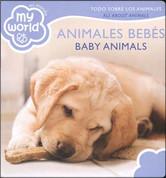 Animales bebés/Baby Animals