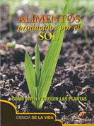 Alimentos producidos por el sol - Food from the Sun