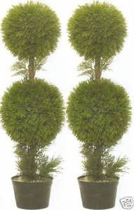 Two 3 foot Artificial Cypress Cedar Double Ball Topiary Trees Potted