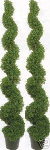 Artificial Boxwood Spiral Topiary Trees Potted 6 foot 3 inch Two UV Rated
