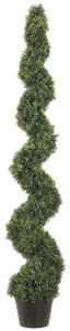 Artificial Boxwood Spiral Topiary Tree Potted 6 foot 3 inch One UV Rated
