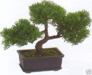 9 inch artificial cedar bonsai tree topiary indoor outdoor plant
