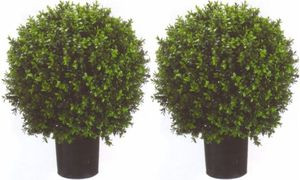 "Two 2 foot Outdoor Artificial Boxwood Ball Topiary Bushes Potted UV Rated Plants 18"" Wide"