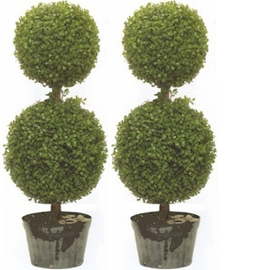 Two 34 inch Artificial Boxwood Double Ball Topiary Trees UV Rated