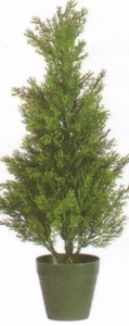 One 2 foot Outdoor Artificial Cedar Cypress Topiary Tree Potted UV Rated Plant