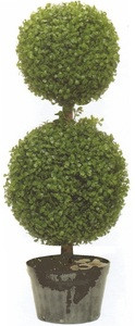 Artificial Boxwood Double Ball Topiary Tree 34 inch tall One Plant